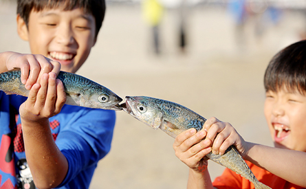 Take part in Busan Mackerel Festival